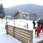 5 najbolj priljubljenih zimskih športov